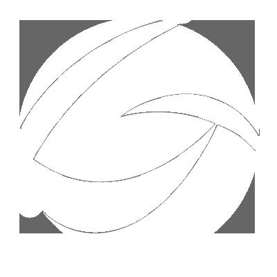 Global Sol Preloader Logo